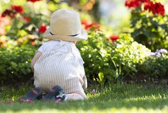 Baby boy crawls on the grass in the garden on beautiful spring day stock image