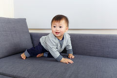 Baby boy creep on sofa Stock Images