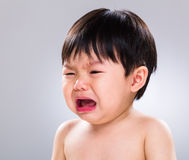 Baby boy cry. With gray background Stock Image