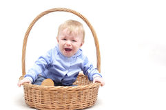 Baby boy crying in basket on white background Stock Image