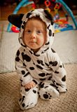 Baby boy In Dalmatian costume. Halloween Dalmatian costume royalty free stock photos
