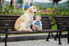 Baby boy with a dog retriever Stock Photography
