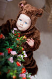 Baby boy dressed as a bear Stock Photography
