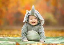 Baby boy dressed in elephant costume in autumn Royalty Free Stock Photography