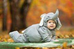 Baby boy dressed in elephant costume Stock Image