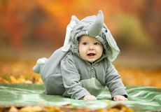 Baby boy dressed in elephant costume in park Royalty Free Stock Photos