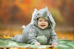 Baby boy dressed in elephant costume in park. Baby boy dressed in elephant costume in autumn park stock images
