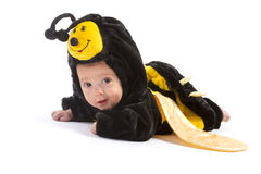 Baby boy dressed up like bee Stock Photos