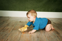Baby boy with duck Stock Image