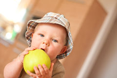 Baby boy eating apple Royalty Free Stock Photography