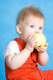 Baby boy eating an apple Royalty Free Stock Photography