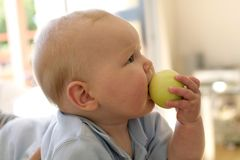 Baby boy eating apple Royalty Free Stock Photos