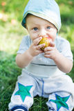 Baby boy eating apple Royalty Free Stock Images