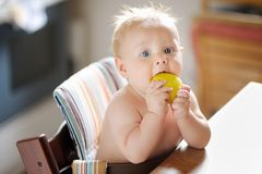 Baby boy eating apple Stock Photo