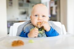 Baby boy eating with BLW method, baby led weaning Stock Photo
