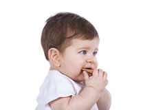 Baby boy eating a cookie Stock Images