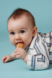 Baby boy eating a cookie Stock Image