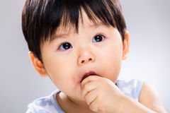 Baby boy eating cookie close up Royalty Free Stock Photo