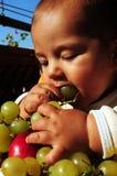 Baby boy eating grapes Royalty Free Stock Image