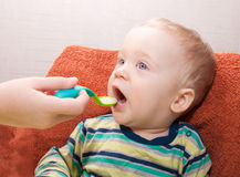 Baby boy eating from green spoon Stock Photos