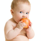 Baby boy eating healthy food isolated Royalty Free Stock Photo