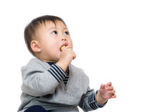 Baby boy eating snack Stock Image