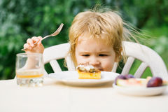 Baby boy eats dessert Stock Images