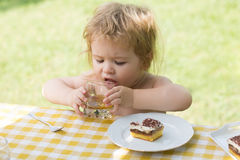 Baby boy eats dessert Royalty Free Stock Photo