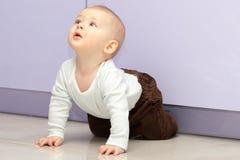 Baby boy crawls Stock Photo