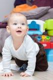 Baby boy crawls Royalty Free Stock Image