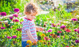 Baby boy exploring outdoor Stock Image