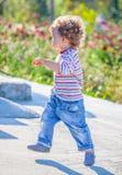 Baby boy exploring outdoor Stock Photography