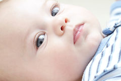 Baby Boy Face Stock Images