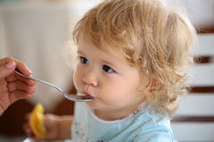 Baby boy fed with spoon Stock Image