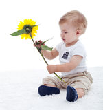 Baby boy with flower. Baby boy holding a yellow flower - isolated stock photography