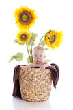 Baby boy with flowers. On white background Royalty Free Stock Photo