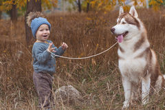 Baby boy in forest with husky dog Royalty Free Stock Photo