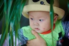 Baby boy in funny panda hat Stock Images