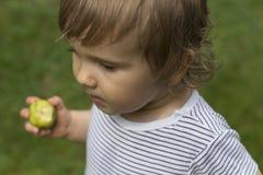 Baby boy in garden. Baby boy eating an apple in the garden Stock Photo