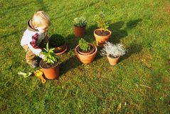 Baby boy gardening royalty free stock photos