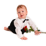 Baby boy gentleman suit and tie butterfly with rose Royalty Free Stock Photos