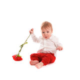Baby boy gentleman suit and tie butterfly on white background Stock Photo