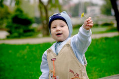 Baby boy giving dandelion. Baby boy on meadow giving yellow dandelion stock photography