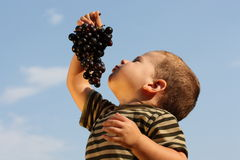 Baby boy with an grape Royalty Free Stock Image