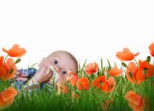Baby boy in gras on a meadow Stock Images