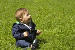 Baby boy on the grass. Portrait of smiling baby boy with red hair wearing zipped jacket and trousers sitting on the grass looking up Royalty Free Stock Photography