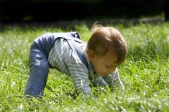Baby boy in green grass. Baby boy playing in green grass Stock Image