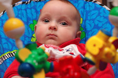 Baby boy with hanging rattles. Baby boy looking at multicolor hanging rattles Stock Photo