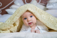 Baby boy is hiding under the white blanket. Baby looking out from under blanket Stock Images