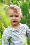 Baby boy in high grass. Puzzled baby boy in high grass Royalty Free Stock Photography